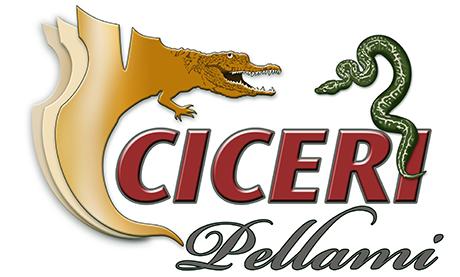 Pellami Ciceri | Pelle Pitone, Coccodrillo e altri rettili pregiati